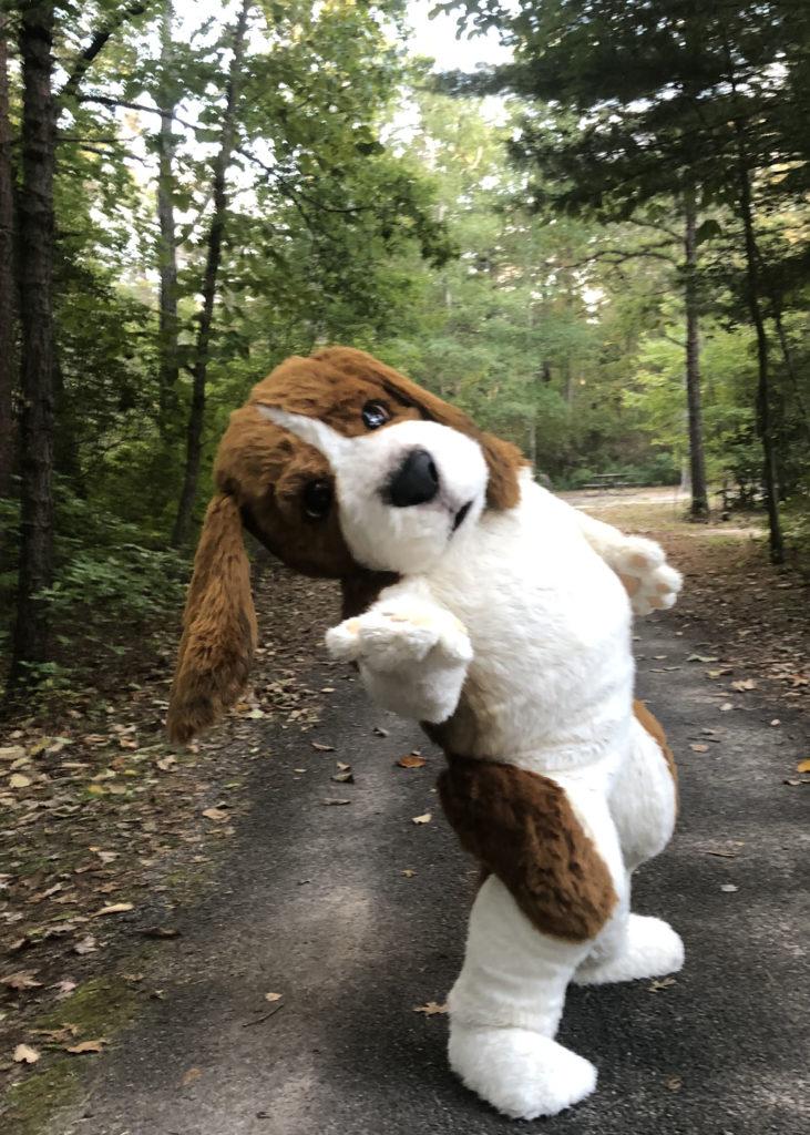 Beagle mascot costume studio
