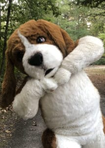 Regal Beagle character costume, ready for your event, big or small