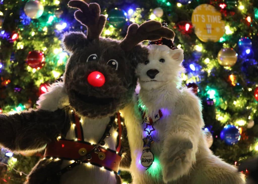 Polar Bear reindeer Character Costume