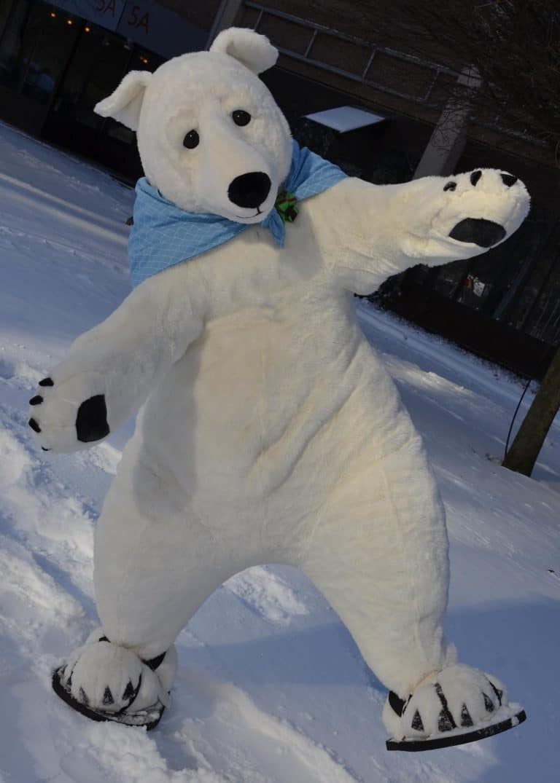 Polar Bear Professional costume