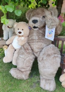 Bentley the bear chooses the winning picture for the WhizzFizzFest Teddy Bear Picnic