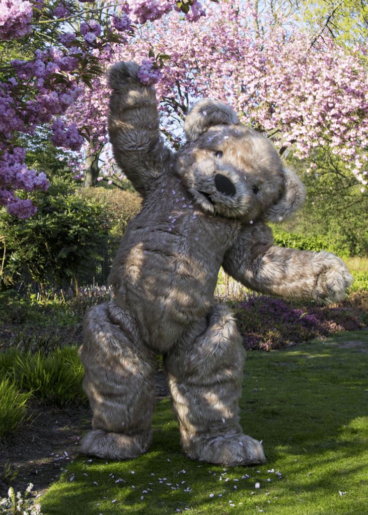 Realistic teddy bear costume blossom Hanami