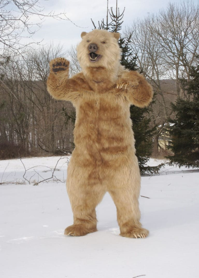 Realistic Kodiak Grizzly animal costume Filming