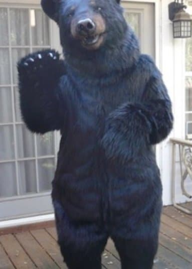 Realistic Jet Black Bear special effects creature costume
