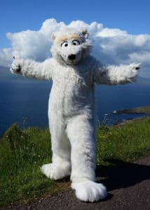 Beary The adorable official mascot of Mascot Ambassadors poses on the Atlantic cliffs in Ireland