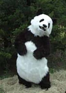 Manchu The Animatronic lifelike Panda Costume By Mascot Ambassadors