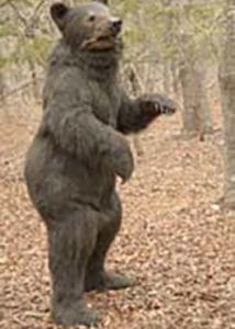 Realistic special effects bear creature suit