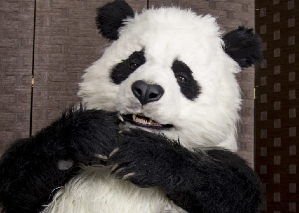 Realistic animated Panda costume By Mascot Ambassadors studio prop hire