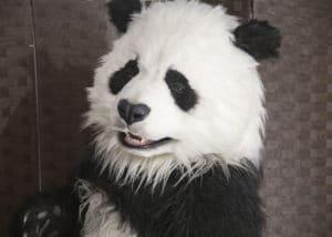Manchu The Animatronic Panda SPFX suit By Mascot Ambassadors