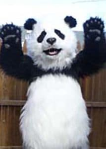 Animatronic lifelike Panda Costume
