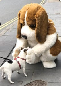 Regal the beagle SPFX Costume prop