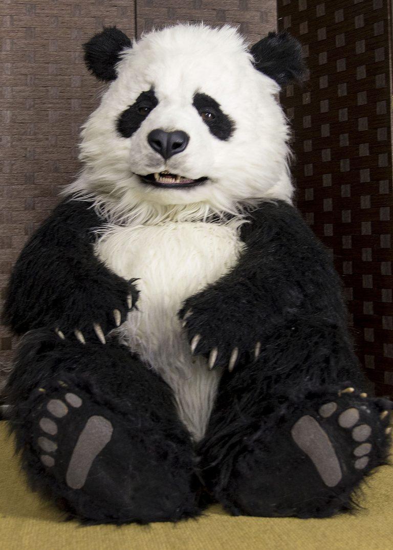 Realistic animated Panda costume