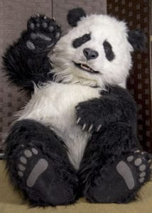 Realistic animated Panda costume