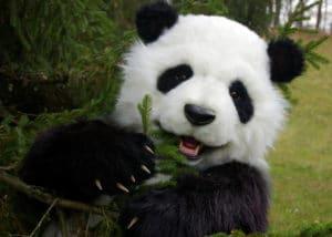 realistic panda costume