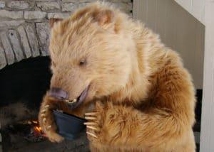 Karluk the SPF animatronic bear and Katy Perry