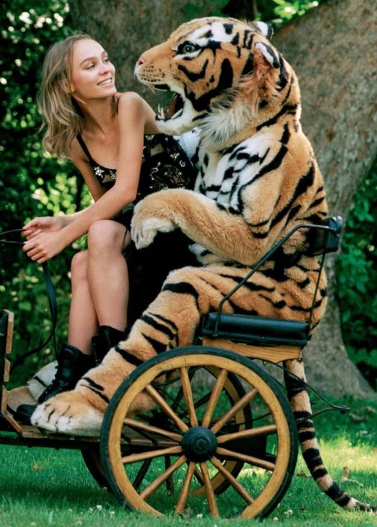 realistic tiger costume for hire