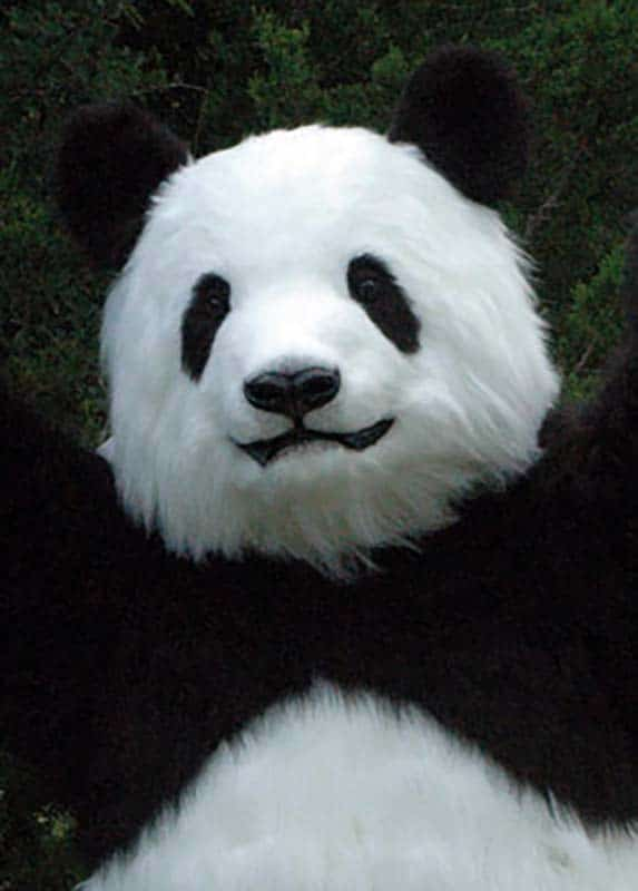realistic panda costume for TV