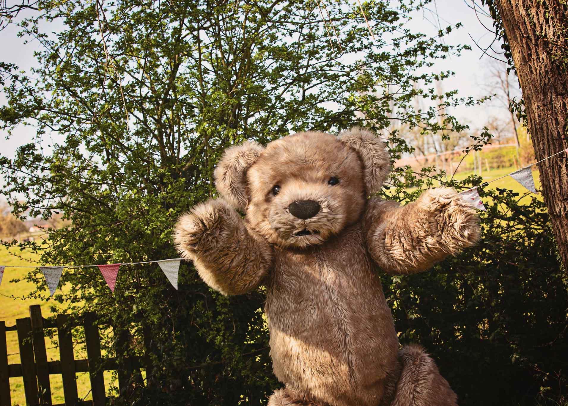 Teddy Bear character costume Bentley The Bear