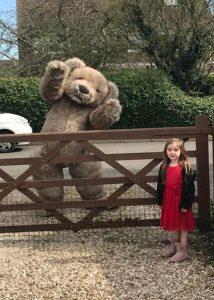 Teddy Bear Coronavirus covid19 lockdown