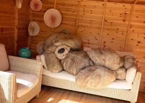 Lazy teddy bear character suit Bentley The Bear