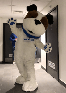 Professional mascot dog costume