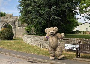 Realistic Teddy Bear costume Bentley The Bear prop hire