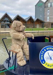 Realistic teddy bear costume Bentley the Bear, driving a narrowboat for an event